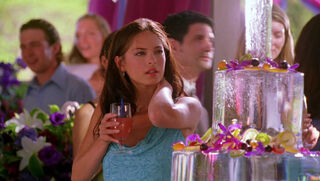 Desiree Atkins (played by Krista Allen) Smallville 32