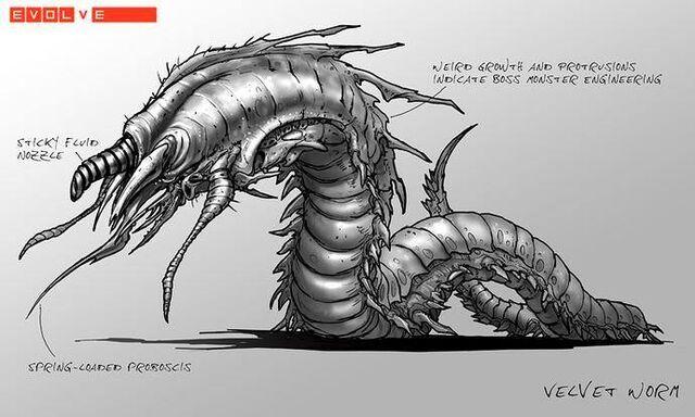 File:Velvet worm.jpg