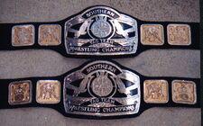 SCW Tag Team Championship