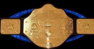 EMF World Title