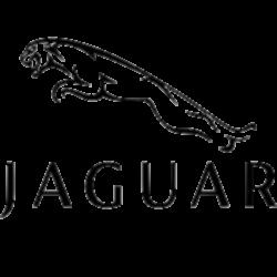 File:Jaguar.png