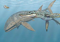 File:250px-Leedsichthys and Liopleurodon DB.jpg