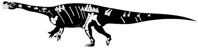 File:Aardonyx - 1(Skeletal).jpg