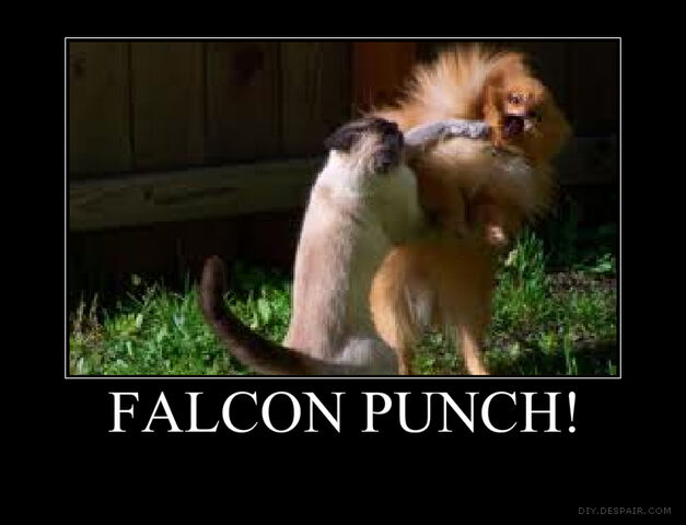 File:Falcon Punch Catposter.jpg