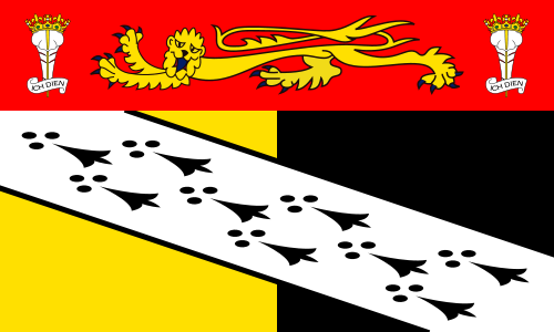 File:County Flag of Norfolk.png