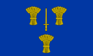 File:County Flag of Cheshire.png
