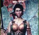 Brodican Warrior Queen Outfit