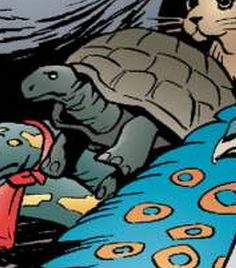 I6 Tortoise