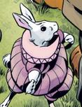 I100 White Rabbit