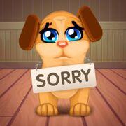 Dr. Cares Sorry
