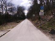 Königsweg vom Auerbachtunnel aus gesehen
