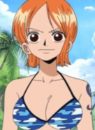 Nami - fairy-one-piece-tail-1.7