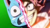 Natsu and Happy determined
