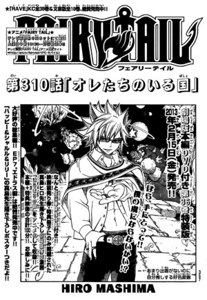 Cover 310