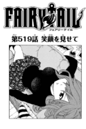 Cover 519