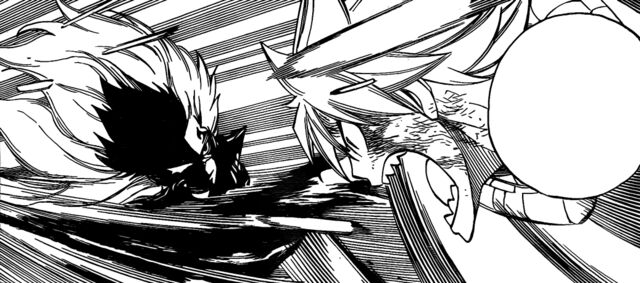 File:Natsu's rematch with Future Rogue.jpg