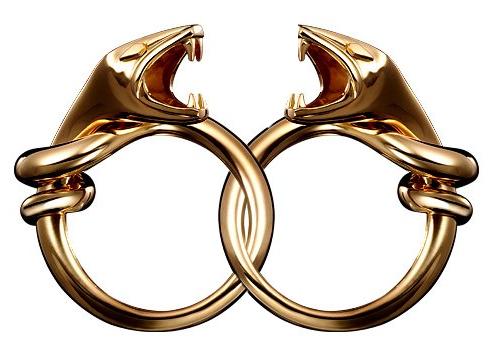 File:Cobra rings.png