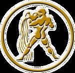 Aquarius Emblem