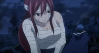 Jellal and Erza Fighting Back-to-Back