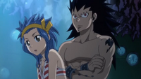 Gajeel and Levy Overhead