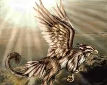 Sparrow Gryphon form