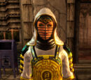 Lightbearer Grandmaster's Gear