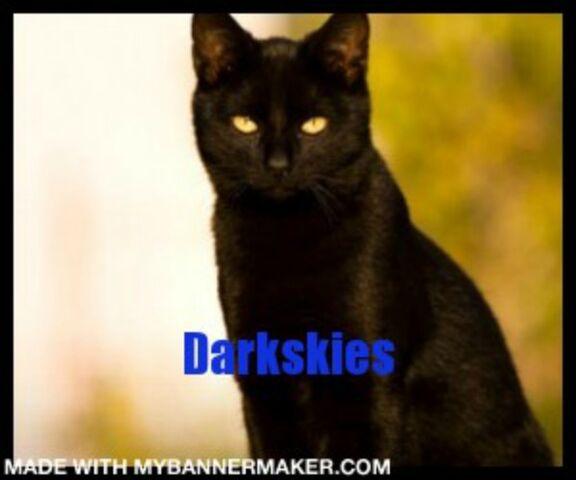 File:Banner, Darkskies.jpg