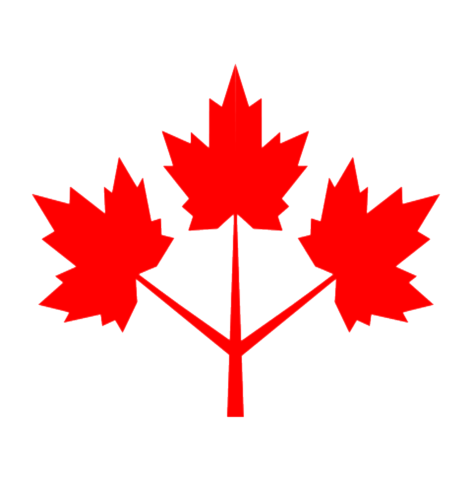File:Canadian Resistance Icon.png