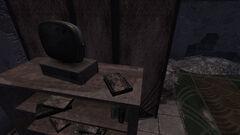 DM Journal ruined store