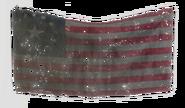 Fo4-US-flag