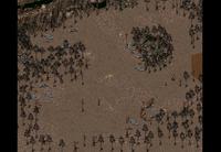 Den slave run camp