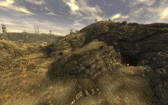 Cazador nest