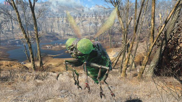 File:FO4 Glowing Bloatfly.jpg
