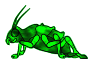 FoS glowing radroach