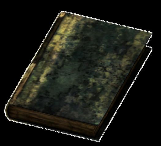 File:Large Burned Book.png