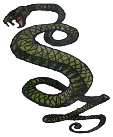 File:Tunnel Snakes logo.png
