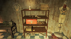 FO4NW Test eight