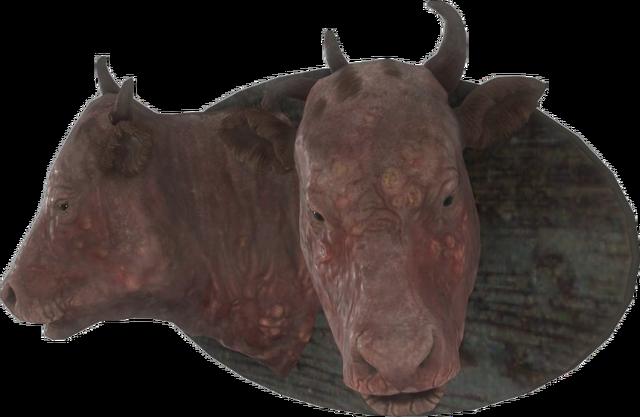File:FO4-Mounted-Brahmin-Head.png