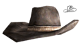 Sheriffs hat.png