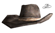 Sheriffs hat