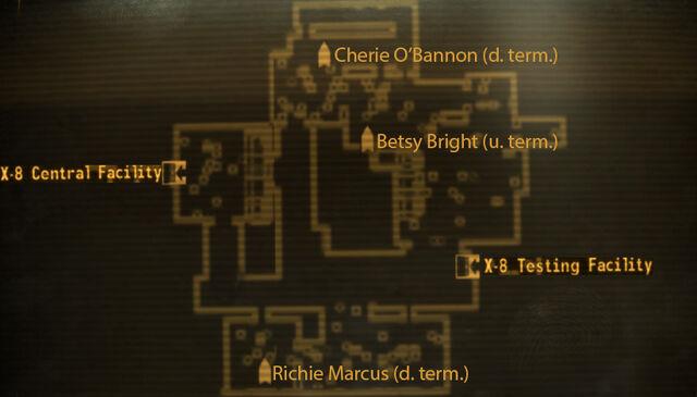 File:Terminals after releasing nightstalkers.jpg
