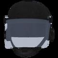 Vault 101 security helmet.png