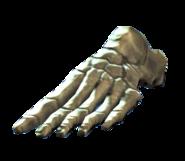 Left foot bones