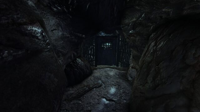 File:Damp cave4.jpg