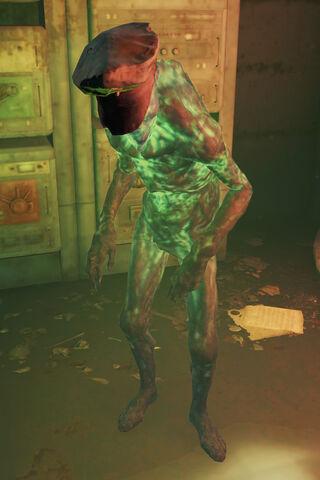 File:First Mate ghoul.jpg