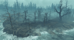 FO4 FH Cranberry Island