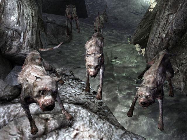 File:Vicious dogs Warren.jpg