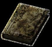 Small Burned Book