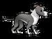 FoS Greyhound