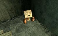 Hidden Frag Mine